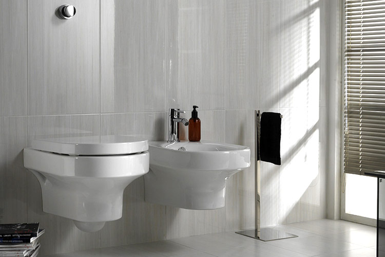 servicio baño roso sanitario